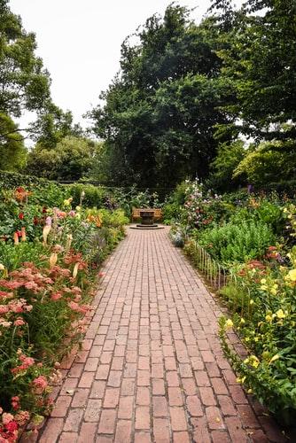 Ogród nie do poznania 1