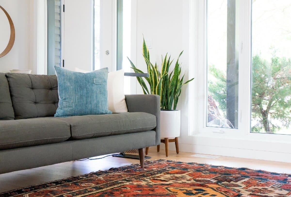 Jak wyprać dywany i tapicerki odkurzaczem piorącym? 1